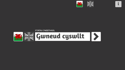 Screenshot #3 pour Gwneud Cyswllt/ Making Contact