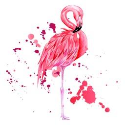 Watercolor Flamingo Stickers