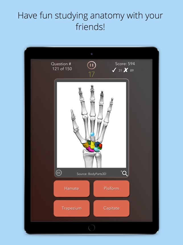 Anatomist Anatomy Quiz Game On The App Store