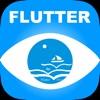 Flutter示例+