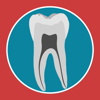 Dental Corpus Primary