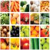 Human Nutrition Quizzes