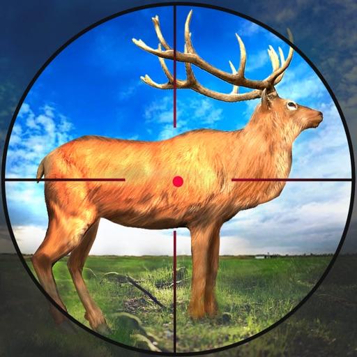 Hunting Games 2021 : Wild Deer