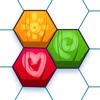 Hexa Gone Puzzles