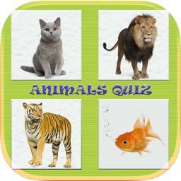 Animals Quiz Game In World