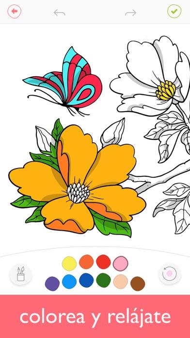 Colorfy Juegos De Colorear App Report On Mobile Action