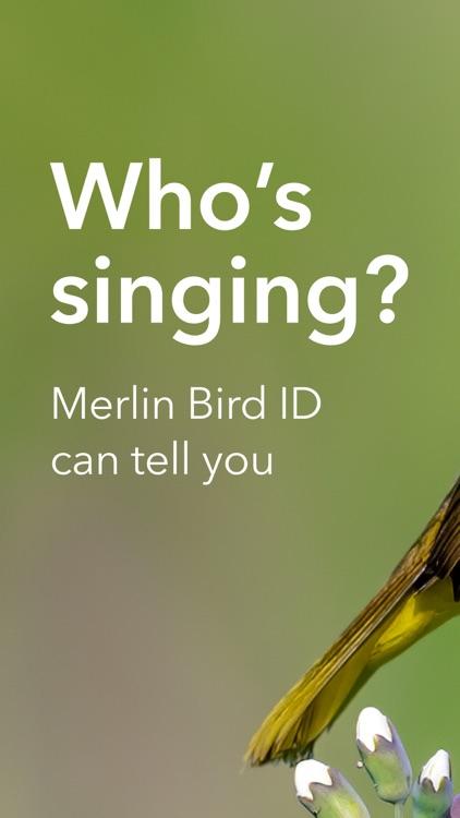 Merlin Bird ID by Cornell Lab screenshot-0