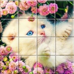 Tile Puzzle Cats