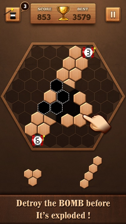 Wooden Hexagon Fit: Hexa Block