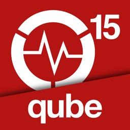 qubeL15