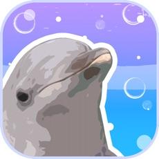 Aquarium Games
