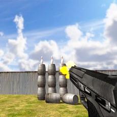 Activities of Hit It An Expert Gunshoot