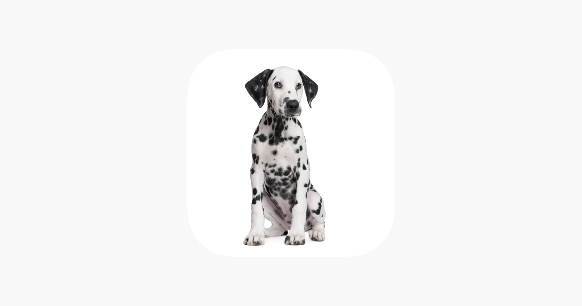 rover mobile on the app store