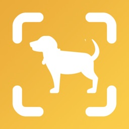 Dog Scan - Breed Identifier