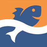Прогноз клева - ТипТоп Рыбалка на пк
