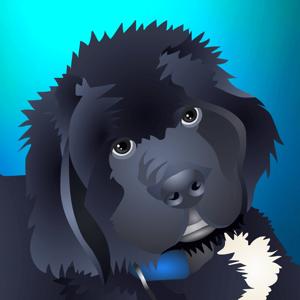 NewfyMoji app