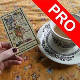 Tarot Cards Reading Pro