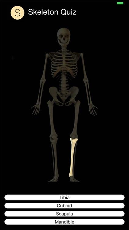 Skeleton Quiz screenshot-6