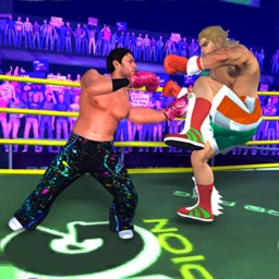 Real Wrestling: Ring Fight 3D