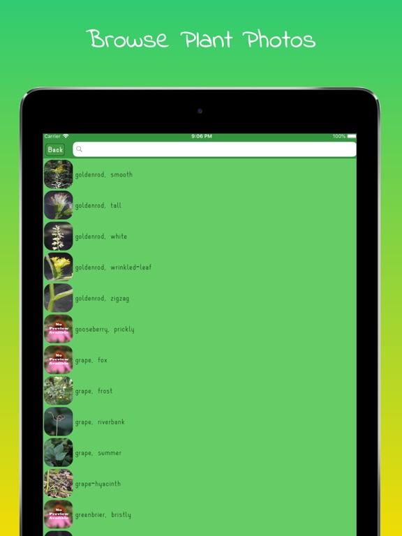Plant Identifier - WildPlantID screenshot #3