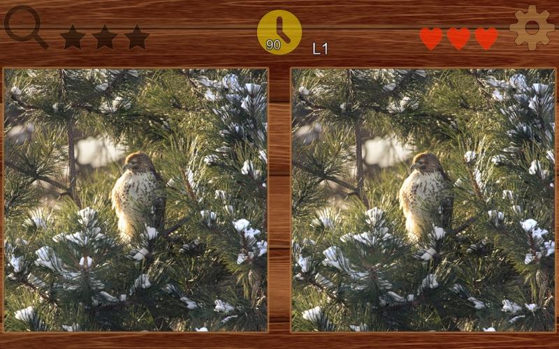 Find Different - picFind screenshot 4