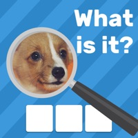Zoom Quiz Game: Guess The Pics Hack Coins Generator