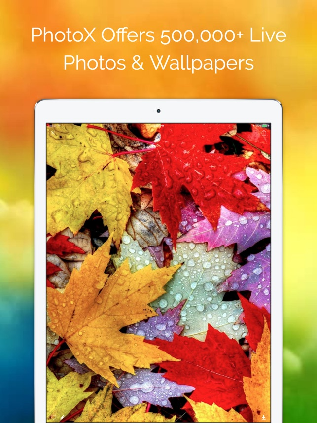 PhotoX Pro Top Live Wallpapers Screenshot