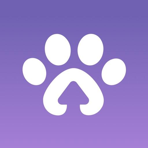 Paway: Meet Local Pet Parents