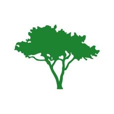 Green Tree CC