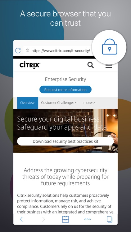 Citrix Secure Web