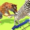 funcell Games Pvt Ltd - Animal Rescue !!! artwork