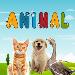 Animal Puzzle Games & Learning