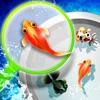 シン・金魚すくい屋 - iPadアプリ