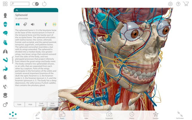 Human Anatomy Atlas 2017 Complete 3d Human Body On The Mac App Store
