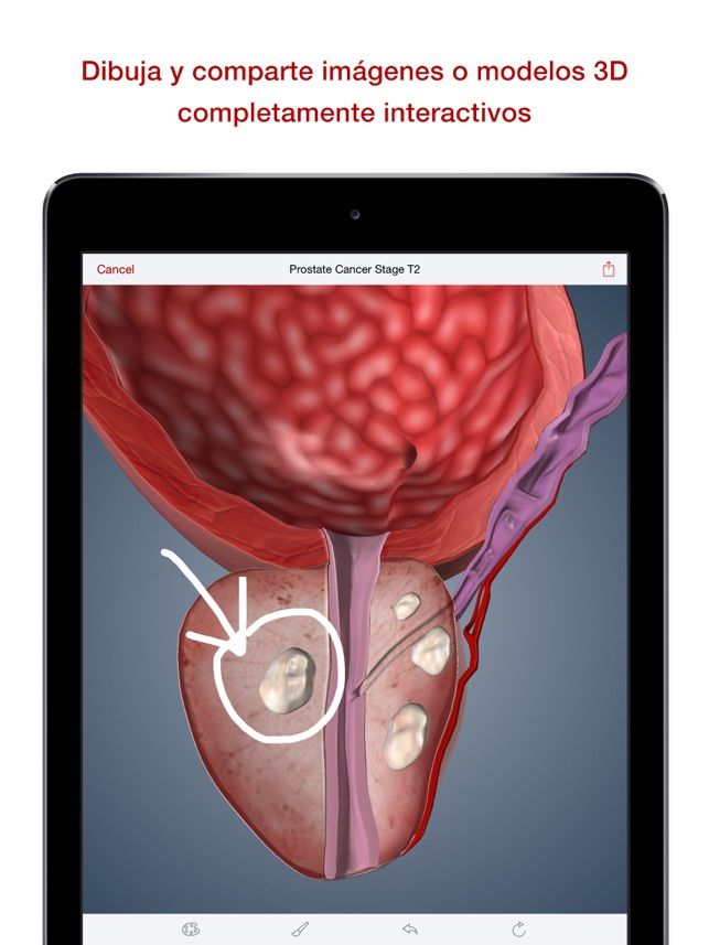 BioDigital Human en App Store