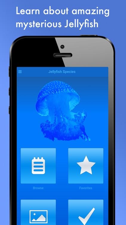 Jellyfish Species