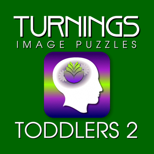 Turnings Image Puzzles Toddlers 2