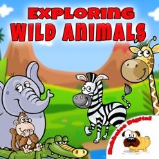 Activities of Wild Animals