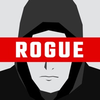 Codes for Rogue Hacker Hack