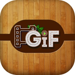 Animated Picture Creator in Wood Fashion Pro