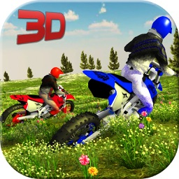 3D Motor Bike : Offroad Drag Racing