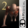 iMuscle 2 - 3D4Medical.com, LLC