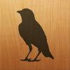 Blackbird! Icon