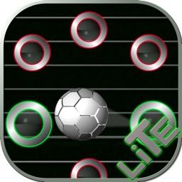 Keepaway Soccer Lite