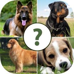 Pups Pet Trivia – The Dog Lovers Quiz Pro