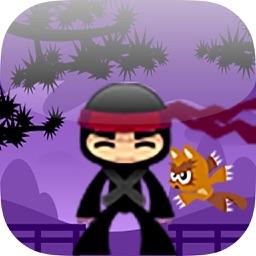 The Ninja Versus Cats Adventure