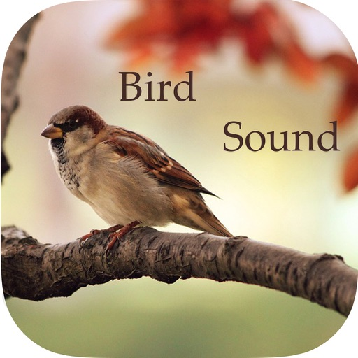 Sparrow Sounds - Free Sounds