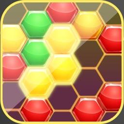 Hexa Block Ultimate Puzzle