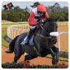 Racing Horse Simulator :  3D Jumping Game