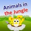 Animals in the Jungle :